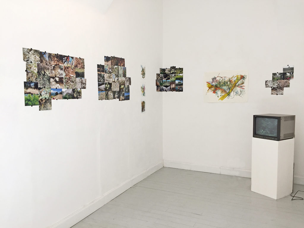 Belvedere, exhibition view