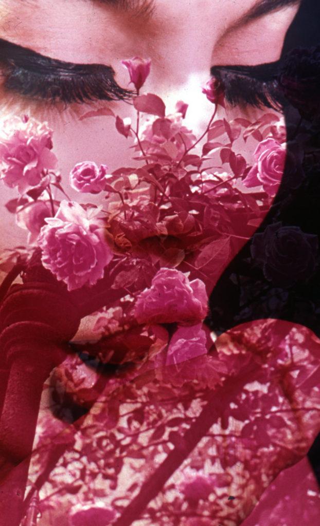Silvia Margaria, Nidificare (serie), 2014, diapositive sovrapposte, stampa con serigrafia, cm 24x36