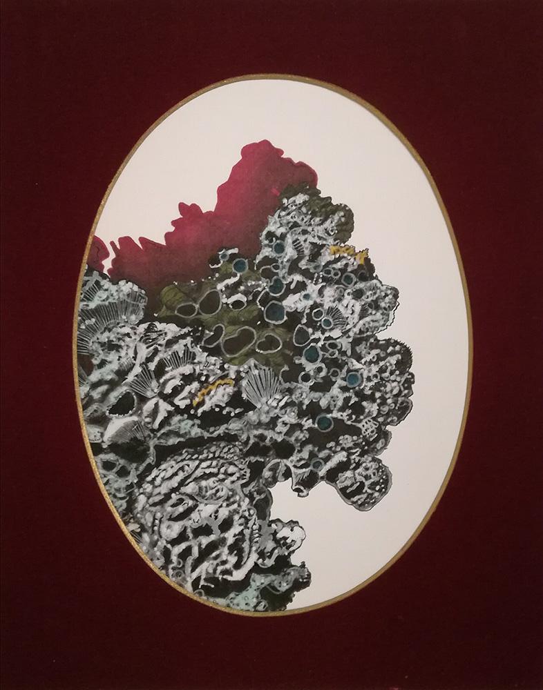Andrea Guerzoni, Novae Lichenum Herbaria C. Sbarbaro, 2017, tecnica mista su carta, 30x24 cm